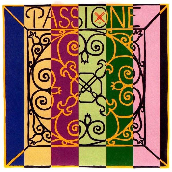 Passione 4/4 Violin Set, mittel