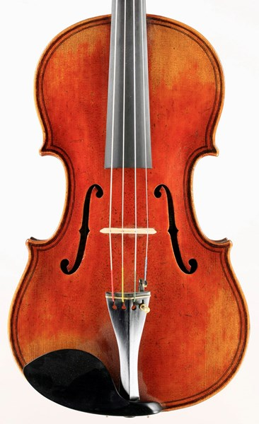 Jay Haide Maggini Model Viola