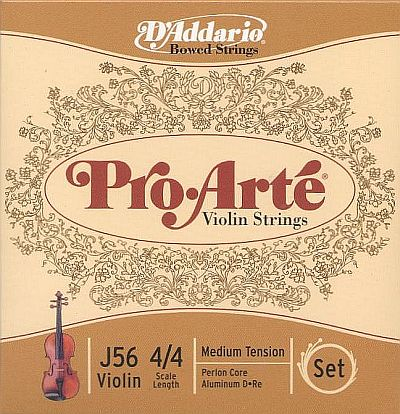 ProArte 4/4 Violin Set